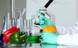 Food Testing Lab In Michigan